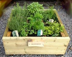 Herb Planter with Six Sections - Pressure Treated Green or can be made to any specific requirements