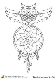 Owl dreamcatcher coloring page #dream #catcher