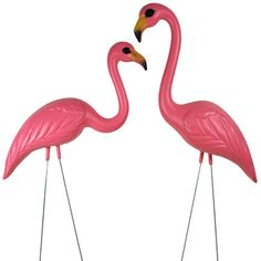 Pink Flamingos- tacky & fun at the same time. One day I will have these in my front yard