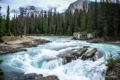 Kicking Horse River in Alberta is a MUST SEE! #travel #Canada