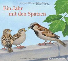 Ein Jahr mit den Spatzen von Thomas Müller http://www.amazon.de/dp/3836957167/ref=cm_sw_r_pi_dp_wDTavb1WTZF6X