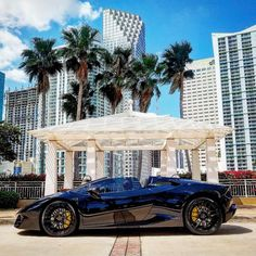 "1,870 Likes, 2 Comments - MC CUSTOMS (@mccustomsmiami) on Instagram: ""It's Sunday....... and the body knows it .!!!!!!! Happy Palm Sunday to all .!!!!!! #lambo…"""