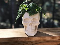 Skull Planter - Large Skull Flower Pot - Succulent Planter - Air Plant Holder - Planter - Skull Head Sculpture - Home Decor - Skull Decor - Flower Pot - Cacti Planter. Unique skull planter made from my own mold. This is an original design you will not find elsewhere! If your home doesn't already have one of these it should! This planter is perfect for large succulents, cactus and air plants. It will also make a fabulous housewarming gift! There is no hole for drainage, so it is best…
