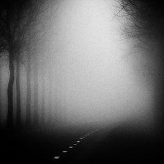 foggy dark street