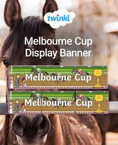Head your 'Melbourne Cup' display with this lovely themed banner! Features our own illustrations to help brighten up your classroom, and clearly define the theme of your topic board. The banner prints over 3 sheets which you can piece together. Display Banners, Comprehension Activities, Melbourne Cup, Classroom Displays, Activity Games, Classroom Activities, Task Cards, Teaching Resources, A4