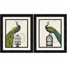 """Create a charming display in your foyer, den, or master suite with this framed print, showcasing a colorful peacock perched atop a birdcage.     Product: Set of 2 framed prints   Construction Material: Paper, glass and polystyrene   Color: Black frame   Features: Peacock perched atop a birdcage motif  Arrives ready to hang   Dimensions: 27.25"""" H x 23.25"""" W each    Cleaning and Care: Wipe with dry cloth"""