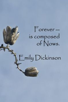 Forever is composed of nows...