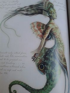 Mermaid from the Spiderwick chronicles field guide