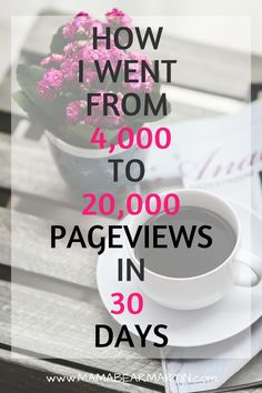 This new blogger shares her best new blogger tips for social media that helped her grow her blog traffic from 4k to 20k pageviews in just one month! Blog Income Reports| Blog Income Reports 2017 | My Fourth Month Blogging | MamaBearMartin.com