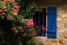 blue shutter w/ pink flowers