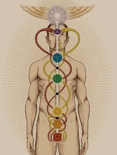 """Kundalini (the magical power of the human organism) is awakened only by will, and blood is the vehicle of the spirit. The pineal gland is the channel of direct spiritual energy and can be motivated by constant self-enquiry."" Laurence Gardner x"