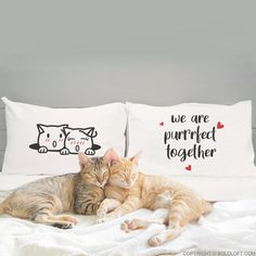 Cat gifts for cat lovers! You've found your perfect match. Give our adorable cat themed pillow case set to your loved ones as a reassurance that you're Purrfect Together!