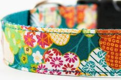 another great dog collar