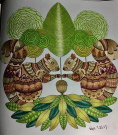 Colouring Millie Marotta Birds Trees Oiseaux Arbres