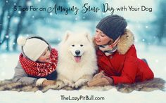 5 Tips For an Amazing Snow Day with Your Dog | http://www.thelazypitbull.com/snow-day-with-dogs/