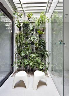 Como deixar a casa mais fresca com plantas em 5 passos (Foto: Maira Acayaba/Divulgação)