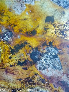Каменный шпон или гибкий камень, песочный цвет, текстура, фактура камня. Stone veneer and flexible stone, sand color, the texture, the texture of the stone. Абстрактное, Painting