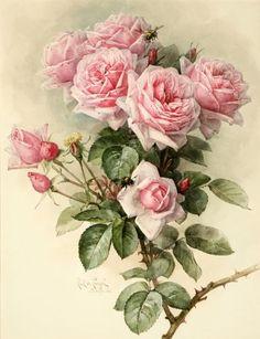 ♥ Paul de Longpré - rose art: