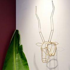 Gazelle                             – Bend Store