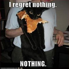 This is totally my cat...and he loves pizza!