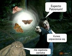 Polish Memes, Very Funny Memes, Dead Memes, Angel Beats, Harry Potter Memes, Cthulhu, Behind The Scenes, Fandoms, Marvel