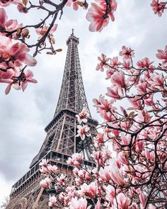 Spring time in Paris. Magnolia blossom in front of the Eiffel Tower. Beautiful Paris, Paris Love, Eiffel Tower Photography, Paris Torre Eiffel, Paris In Spring, Paris Wallpaper, Paris Pictures, Photos Voyages, Belle Photo
