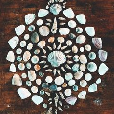 ☾ ☼ Mandala shells // In need of a detox? 10% off using our discount code 'Pinterest10' at www.ThinTea.com.au