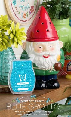 Coming March 1, 2017!  A Garden Gnome for your Scentsy fairyland garden.  Pre-order yours today!  Find me on Facebook, Tracy Todaro Independent Scentsy Consultant, todaro@fidnet.com and shop at:  https://tracytodaro.scentsy.us