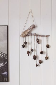 DIY - another great reason to go out in the snow this season! #pinecone