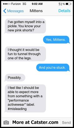 Texts From Mittens: The Stuck-in-Mom's-Shorts Edition | Catster  Click to read the rest!