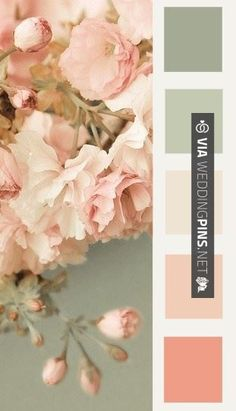 Fantastic! - Wedding Colour Schemes 2017 - My son will be getting married when he and Natalia have saved up so this is a mood board of ideas for them x | CHECK OUT MORE AWESOME SHOTS OF TASTY Wedding Colour Schemes 2017 AT WEDDINGPINS.NET | #weddingcolourschemes2017 #weddingcolorschemes2017 #weddingcolours #weddingcolors #weddingmotif #2017 #colorpalettes #colorschemes #weddingthemes #weddings #boda #weddingphotos #weddingpictures #weddingphotography #brides #grooms