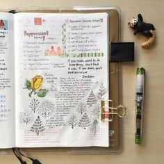 """The hunt for peppermint mocha persist...#doodle #drawing #diary #daily #dailysketch #journal #hobo #hobonichi #hobonichitecho #washi #design #絵日記 #手帳 #ほぼ日…"""