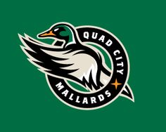 Quad City Mallards Primary Logo on Chris Creamer's Sports Logos Page - SportsLogos. A virtual museum of sports logos, uniforms and historical items. Hockey Logos, Sports Team Logos, Sports Art, Sports Teams, Hockey Teams, Ice Hockey, Video Game Logos, Logo Luxury, Bold Logo