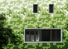 House Siding Idea – Green And White Shingles Cover This Building In Berlin | CONTEMPORIST
