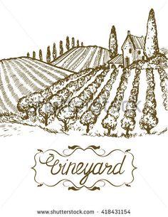 Hand drawn vineyard landscape. Vintage vector illustration. Lettering in frame.