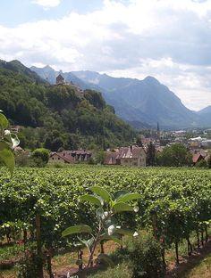 Vaduz Castle above the vineyards, Liechtenstein