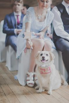 Dog Pet Quirky Cute Pastel Wedding http://www.ferriphotography.co.uk/
