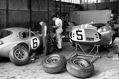 Shelby Cobra Daytona Coupes