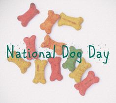 Happy National Dog Day!  TAKE $4 OFF our selection of pet decor using coupon code NTLDOGDAY  #nationaldogday