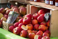 Vente au détail de nombreuses variétés de pommes #pomme #agriculture #verger