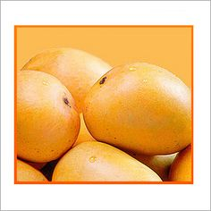 Alphonso Mango - Grows in the Ratnagiri and Devgadh district of Maharashtra and is savoured world over for its sweet and exotic nectar!!