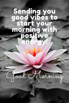 Share these good morning motivational quotes with your friends, Inspirational good morning quotes
