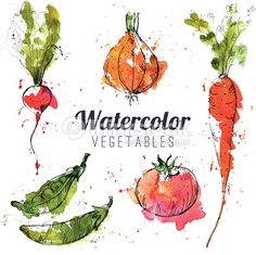 Image result for watercolour vegetables