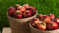 From turnovers to tarts, pies to pastries, apples have an almost endless list of uses.  Want to work more fruit into your diet?  Try out a recipe with apples.  Want to make something sweet AND healthy for the kids?  You got it--try out a recipe with apples.