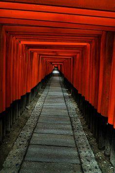 1000 torii gate at Fushimi Inari, Japan