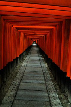 1000 torii gate at Fushimi Inari, Japan: photo by cipher