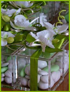Cubi in plexiglass con orchidea