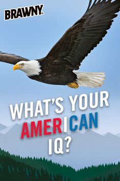 What's your AmerICAN IQ? Answer 10 short, multiple-choice questions in our fun AmerICAN IQ quiz to find out!