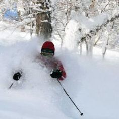 Snow Report - 2011-12-12 - Rusutsu Powder,