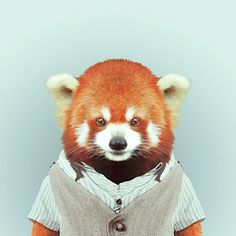 Fashion Zoo Fox Panda